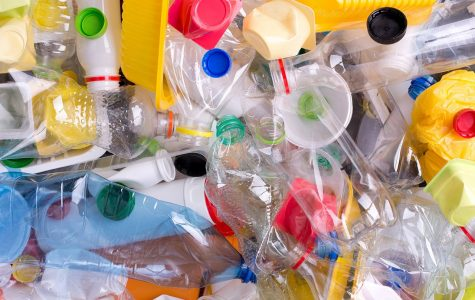 Don't Be Trashy: A Plastic Problem