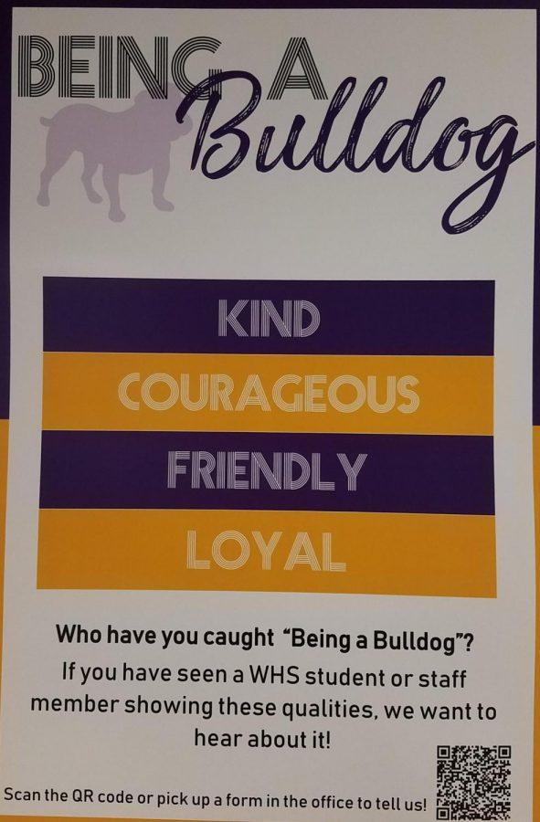 Being a Wylie Bulldog