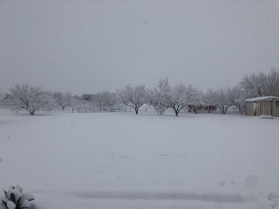 Texas+Snow+Day%21