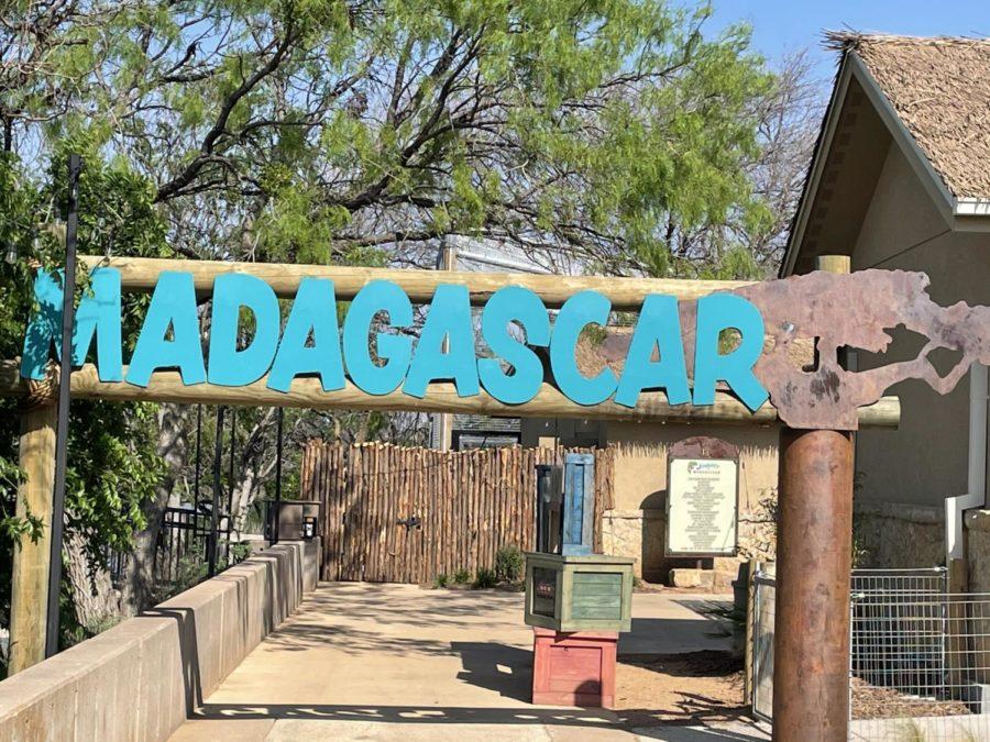 Abilene Zoo Opens New Madagascar Exhibit