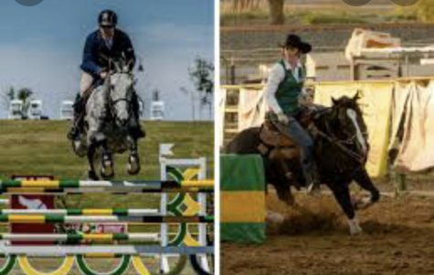 Why is Horseback Riding a Sport?